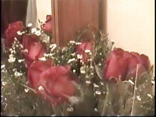 लैटिन फुल सेक्सी हिंदी में वेब कैमरा 204